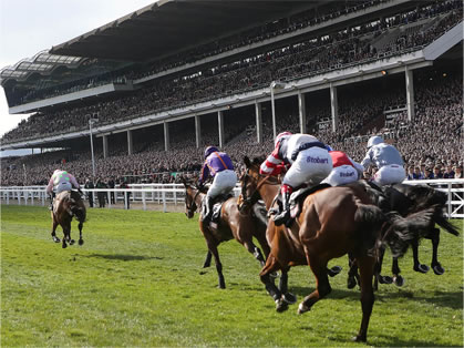 Cheltenham New Year Meeting Private Course Facing Grandstand Box