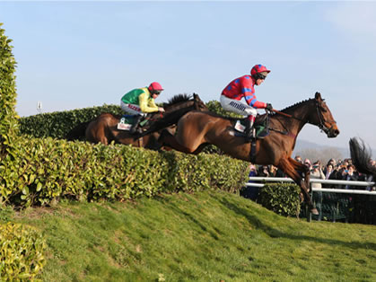 Cheltenham November Meeting Viewing Restaurant Hospitality