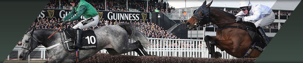 CHELTENHAM INTERNATIONAL MEETING HOSPITALITY PACKAGES (DECEMBER)