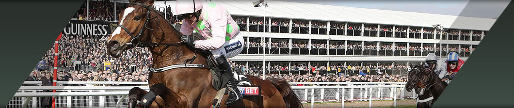 CHELTENHAM New Year's Day Meeting HOSPITALITY PACKAGES (DECEMBER)